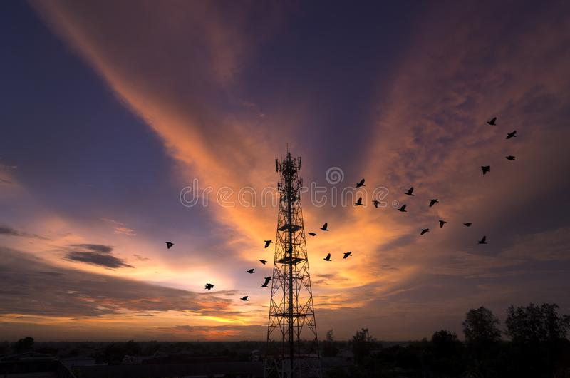 Siluetea la torre de la telecomunicación imágenes de archivo libres de regalías