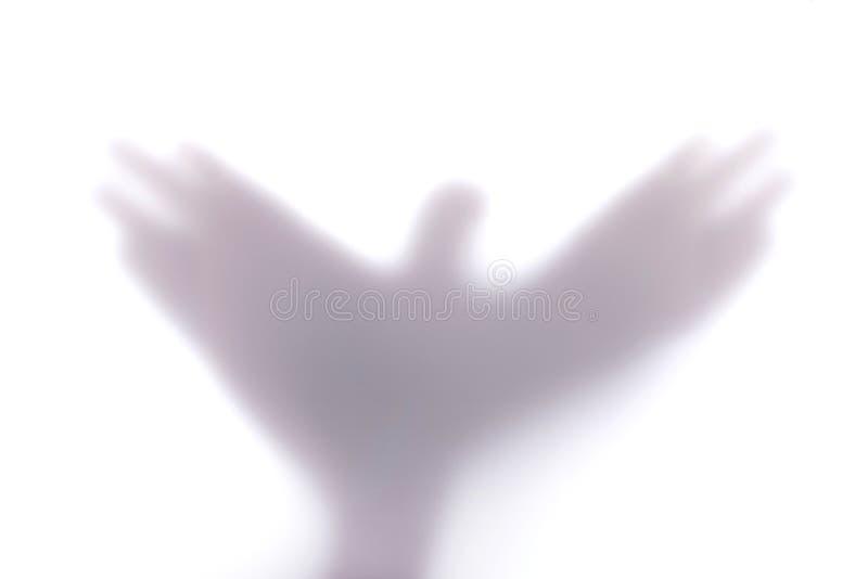 Siluetee crear una forma de un pájaro de vuelo con las manos, detrás imagen de archivo libre de regalías