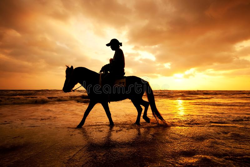 Siluetee el hombre y el caballo en la playa con el cielo de la puesta del sol fotos de archivo libres de regalías