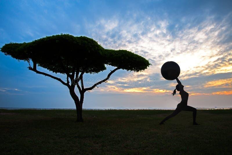 Siluetee a la mujer joven de la yoga con el árbol solo en el fondo de la puesta del sol foto de archivo