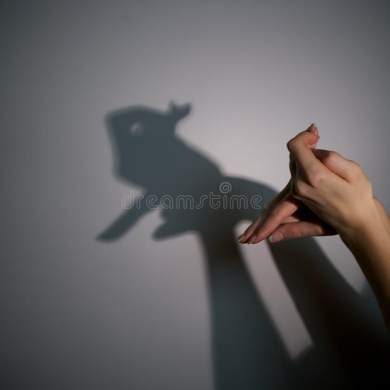 Siluetee la sombra del conejo fotos de archivo