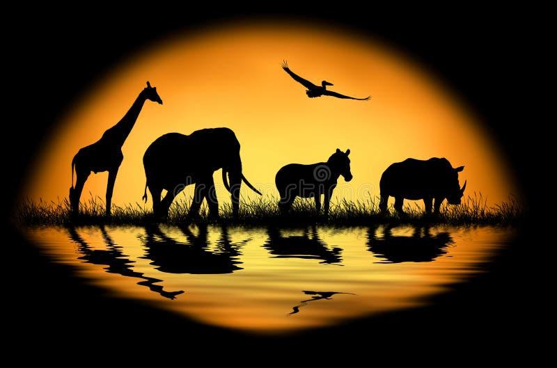 Siluetee los animales africanos en el fondo de la puesta del sol fotos de archivo