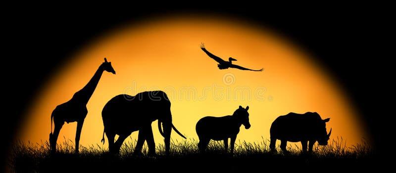 Siluetee los animales africanos en el fondo de la puesta del sol imagenes de archivo