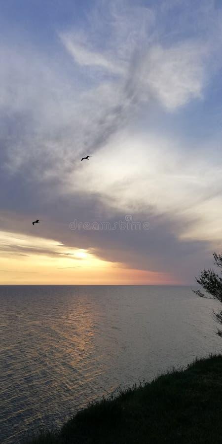 Siluetta degli uccelli sui precedenti del paesaggio uguagliante di tramonto del mare Nuvole insolitamente a forma di fotografia stock
