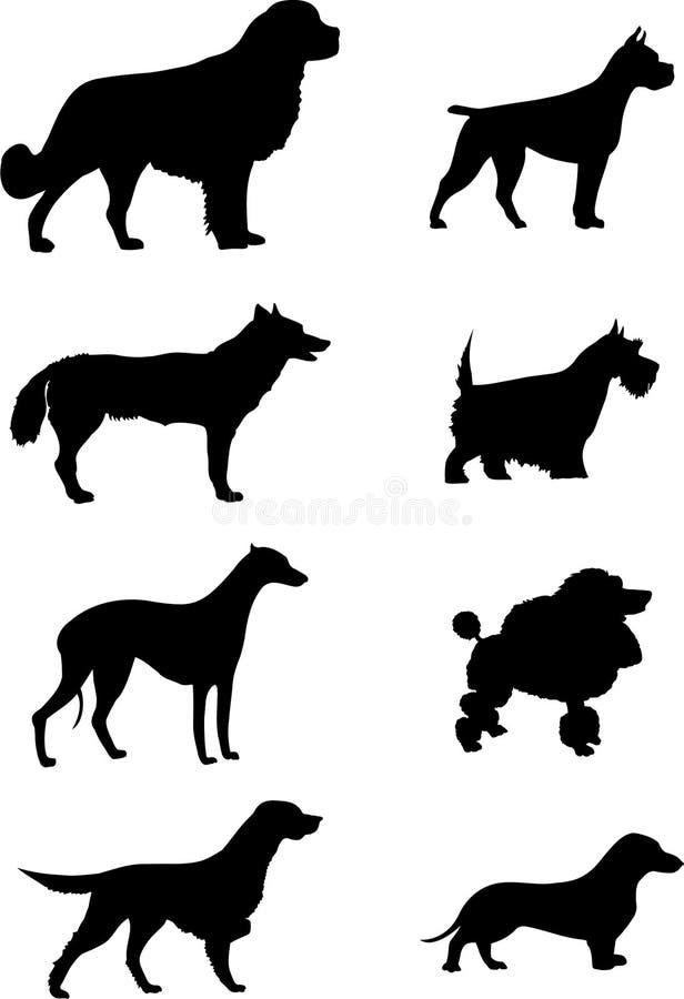 Siluetta dei cani illustrazione vettoriale