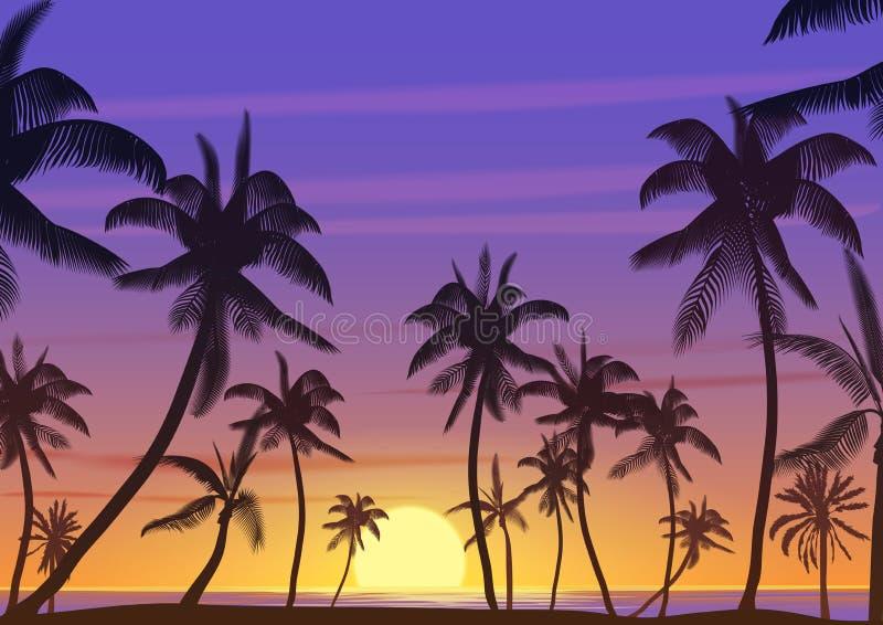Siluetta dei cocchi della palma al tramonto o all'alba Illustrazione realistica di vettore Paradiso della terra sulla spiaggia royalty illustrazione gratis