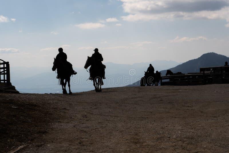 Siluetta dei cowboy che montano un cavallo nella sera fotografia stock
