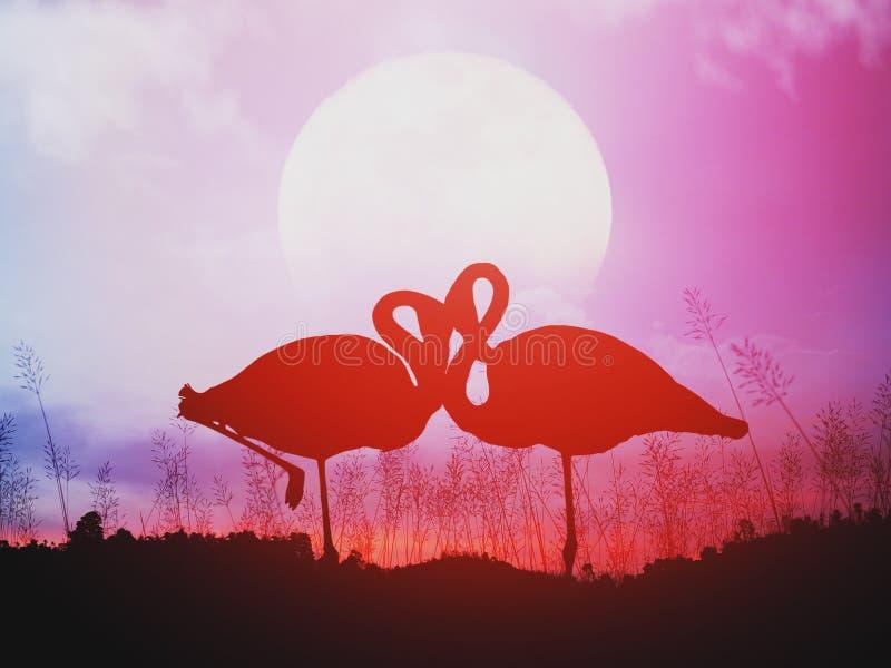 Siluetta dei fenicotteri romantici al tramonto fotografia stock libera da diritti