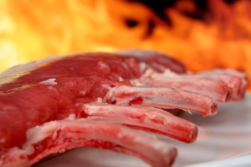 Siluetta del BBQ del giardino di estate isolato contro fuoco immagine stock