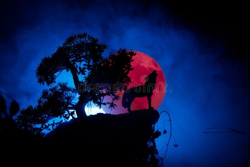 Siluetta del lupo di urlo contro fondo scuro e luna piena o lupo nebbiosa tonificata in siluetta che urlano alla luna piena ciao fotografia stock libera da diritti