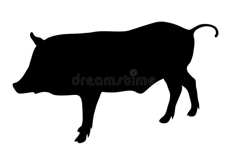 Siluetta del nero del cinghiale su fondo bianco del illustr di vettore illustrazione vettoriale