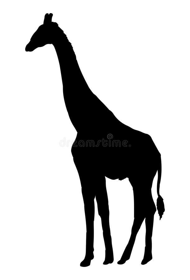 Siluetta del nero dell'illustrazione di vettore della giraffa illustrazione vettoriale