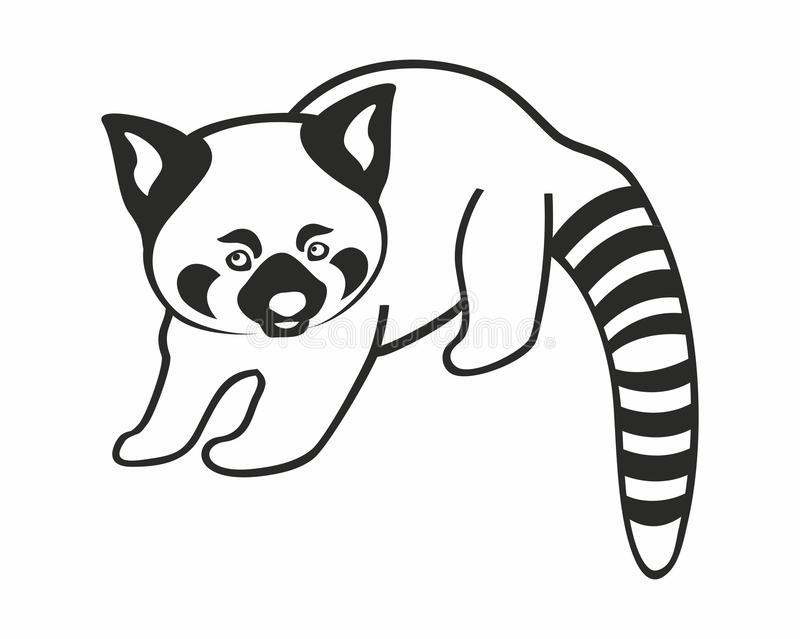 Siluetta del panda minore isolata su fondo bianco illustrazione vettoriale