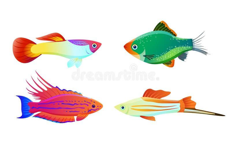 Siluetta del pesce dell'acquario isolata sulle icone bianche illustrazione di stock