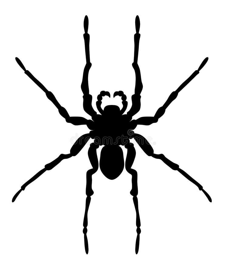 Siluetta del ragno su fondo bianco illustrazione vettoriale