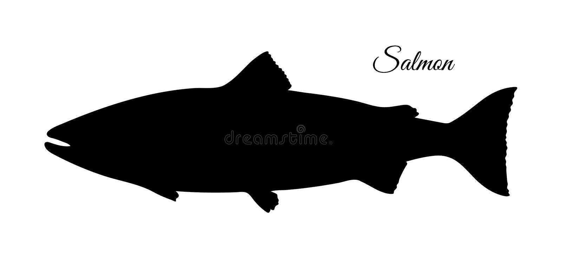 Siluetta del salmone royalty illustrazione gratis
