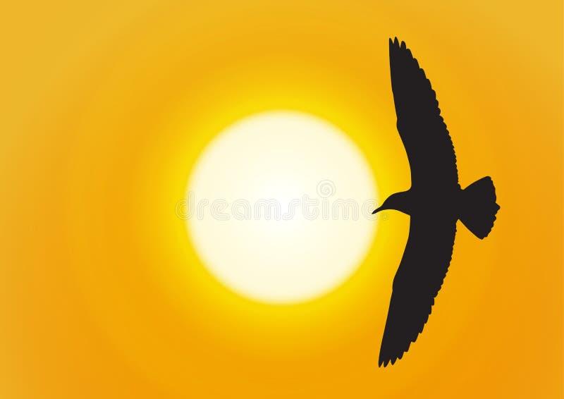 Siluetta del volo del gabbiano sul fondo dorato di tramonto royalty illustrazione gratis