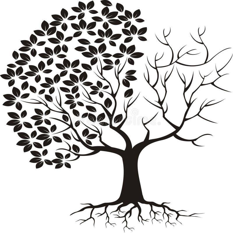 Siluetta dell'albero con le foglie a metà illustrazione vettoriale