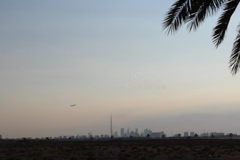 Siluetta dell'albero della palma da datteri del cielo dello skylne dell'aeroplano di khalifa del burj dell'orizzonte del Dubai immagine stock libera da diritti