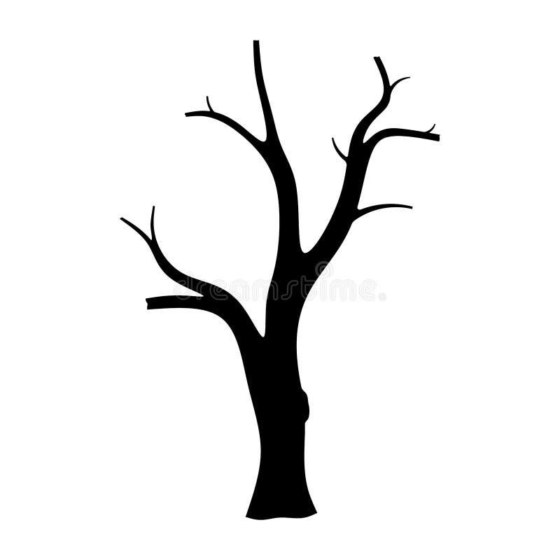 Siluetta dell'albero isolata su fondo bianco immagini stock