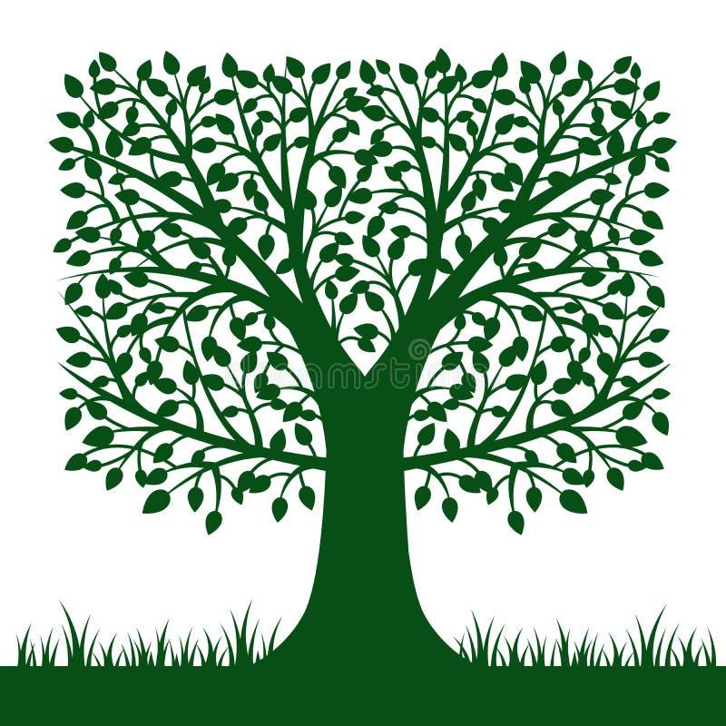 Siluetta dell'albero isolata su fondo bianco Vettore Illustratio illustrazione vettoriale