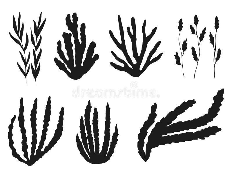 Siluetta dell'insieme dell'alga Isolato sugli elementi bianchi del fondo royalty illustrazione gratis