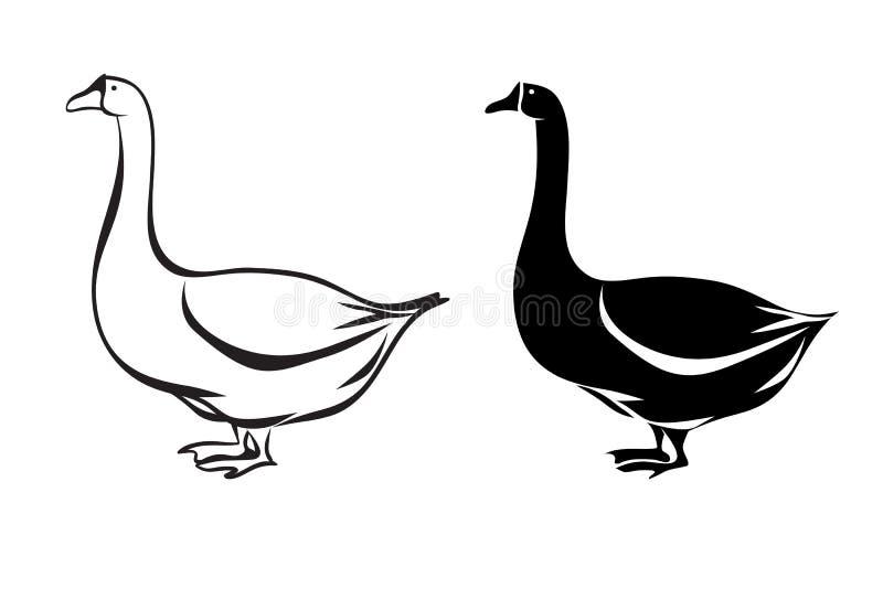 siluetta dell'oca illustrazione di stock