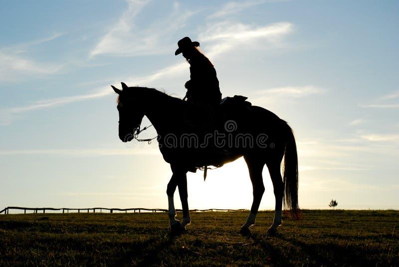 Siluetta dell'uomo e del cavallo immagine stock libera da diritti