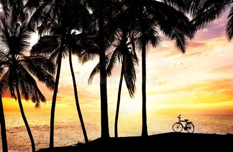 Siluetta della bicicletta sulla spiaggia fotografia stock