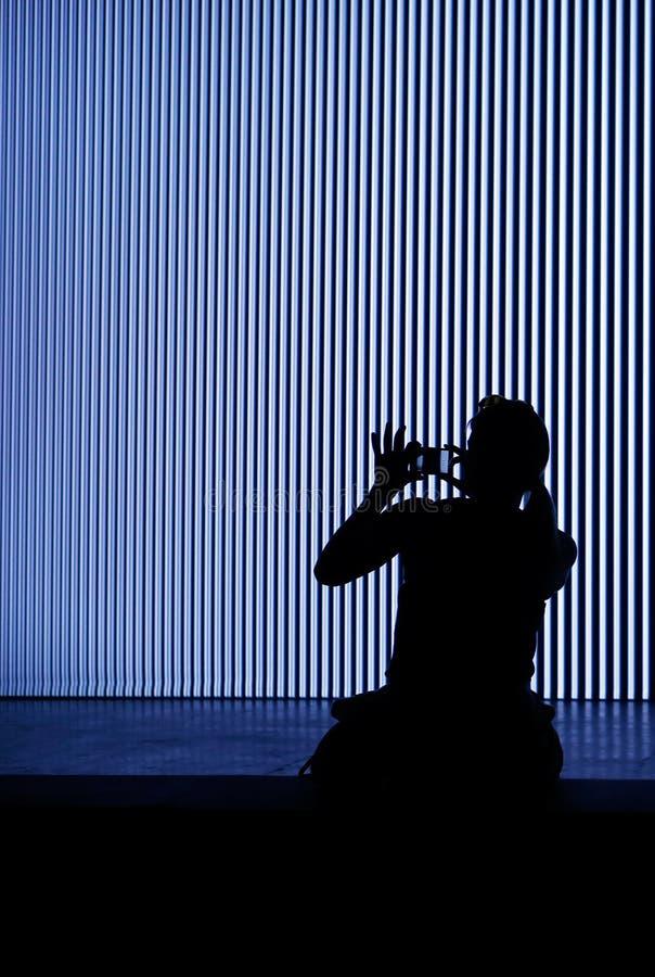 Siluetta della donna che prende immagine con il suo verticale dello smartphone immagini stock