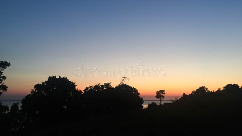 Siluetta della foresta al tramonto fotografia stock