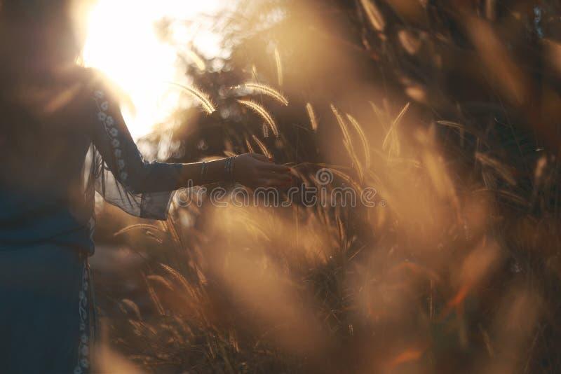 Siluetta della giovane donna che cammina su un tempo di tramonto del campo fotografie stock libere da diritti