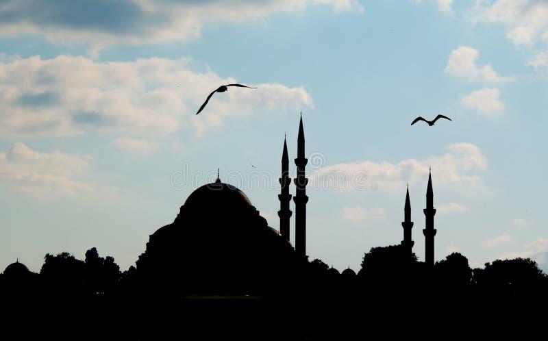 Siluetta della moschea fotografie stock libere da diritti