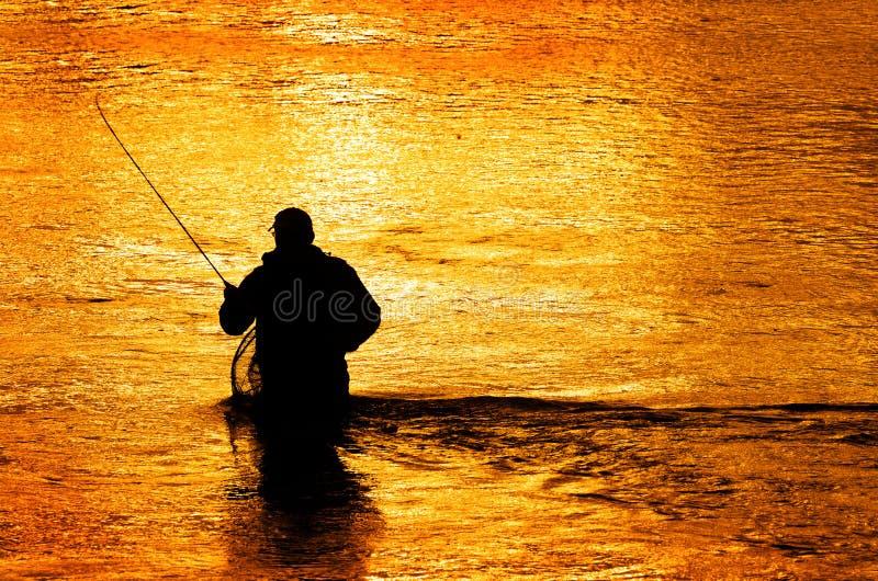Siluetta della pesca con la mosca dell'uomo in fiume fotografie stock libere da diritti