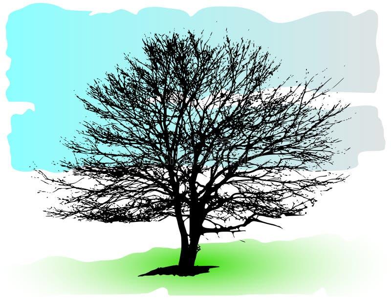 Siluetta dettagliata dell'albero di vettore royalty illustrazione gratis