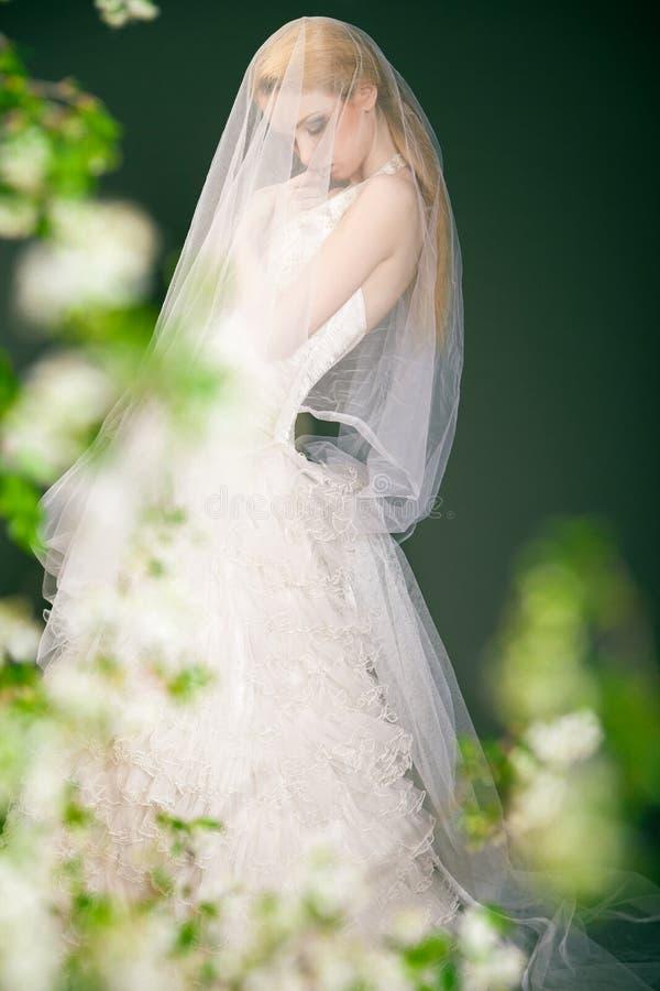 Siluetta di bella sposa premurosa immagini stock