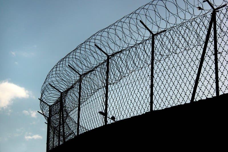 Siluetta di filo spinato a fisarmonica su un recinto della prigione fotografie stock libere da diritti