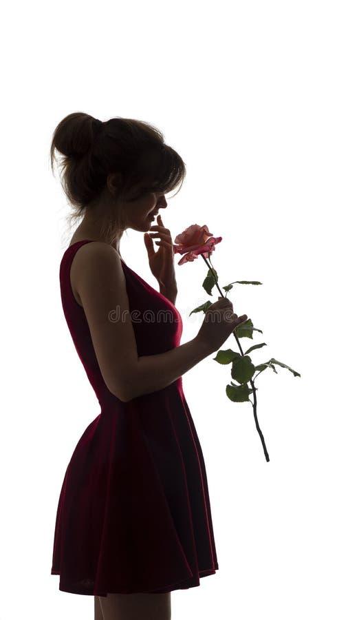 Siluetta di giovane donna felice in un vestito e con una rosa in mani, figura di bella ragazza esile con un fiore su un bianco fotografie stock libere da diritti