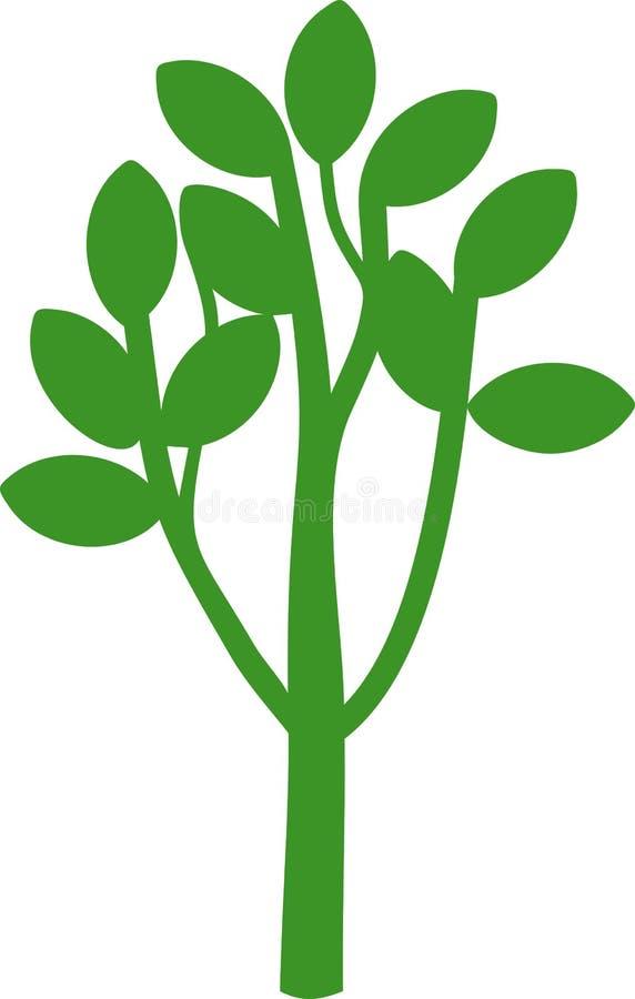 Siluetta di giovane latifoglia del fumetto con la corona e le foglie verdi ramificate sui rami illustrazione vettoriale