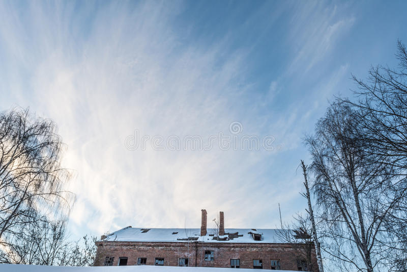 Siluetta di un albero senza foglie su un fondo di cielo blu immagini stock