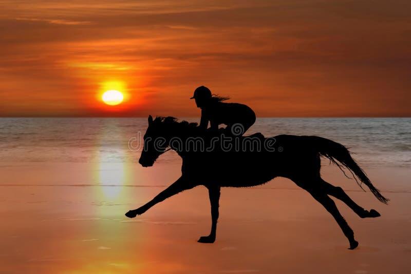 Siluetta di un cavallo e di un cavaliere che galoppano sulla spiaggia fotografia stock libera da diritti