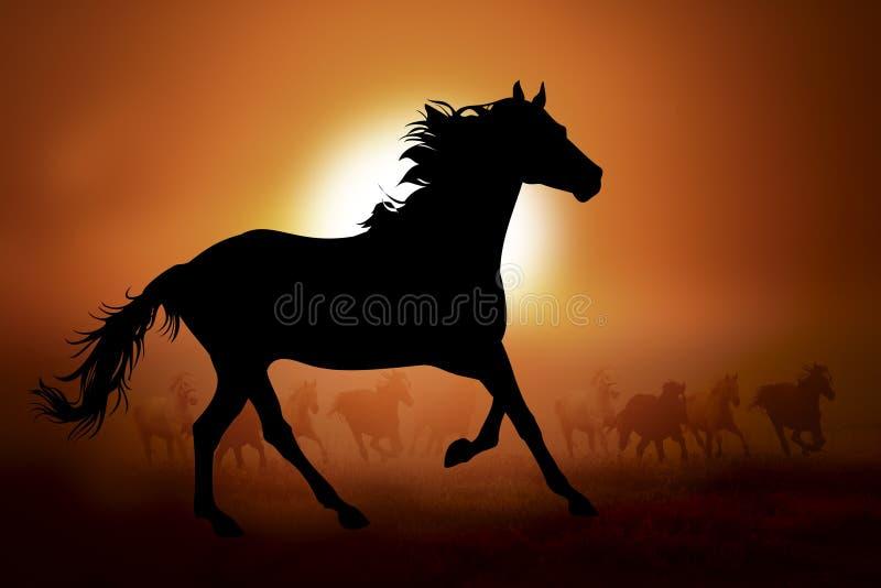 Siluetta di un cavallo nel tramonto illustrazione vettoriale