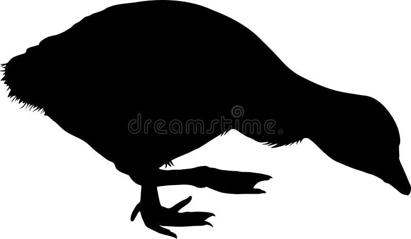 Siluetta di un pollo dell'oca del graylag illustrazione di stock