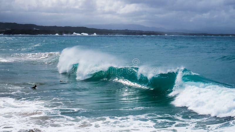 Siluetta di un surfista coraggioso nelle onde immagine stock libera da diritti