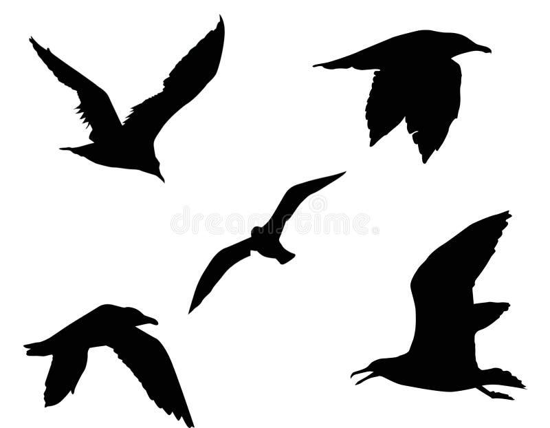 Siluetta di un uccello illustrazione di stock