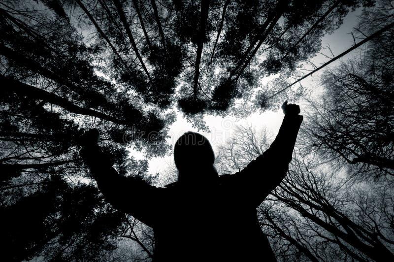 Siluetta di un uomo contro gli alberi in bianco e nero immagine stock libera da diritti