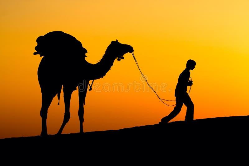 Siluetta di un uomo e di un cammello al tramonto in India fotografia stock libera da diritti