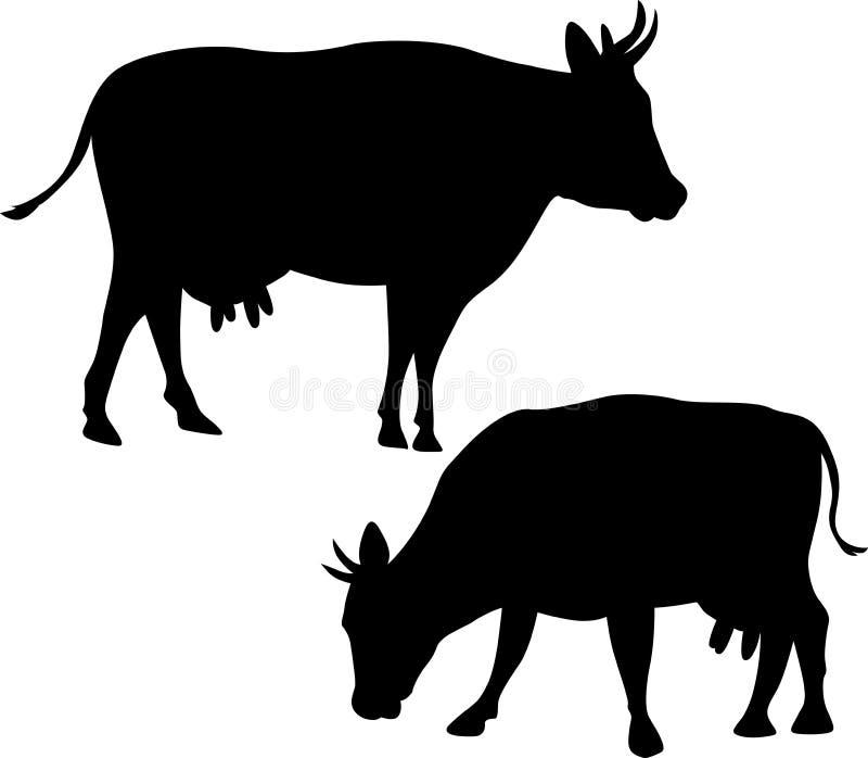 Siluetta di vettore della mucca - illustrazione su bianco illustrazione vettoriale