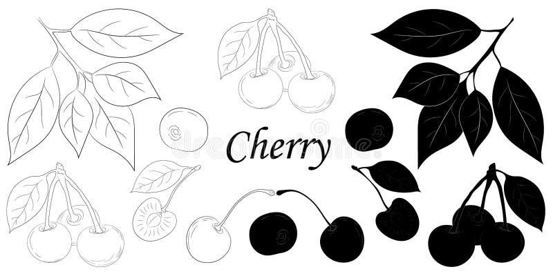 Siluetta isolata ciliegia e schizzo su fondo bianco fotografia stock