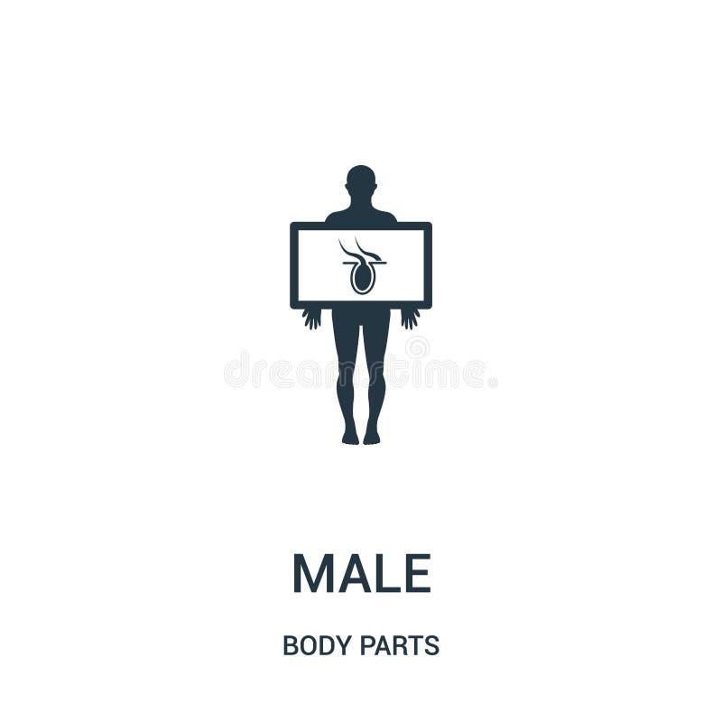 siluetta maschio con l'organo del corpo nel vettore dell'icona di vista del raggio di x dalla raccolta delle parti del corpo Line royalty illustrazione gratis